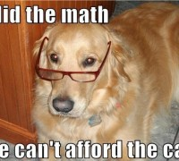 Fiscally responsible canine