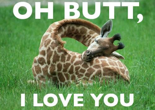Giraffe Riddle